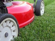 weekly lawn mowing service Royal Gardens Landscaping
